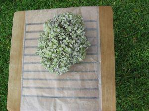 Preserving Dried Hydrangeas